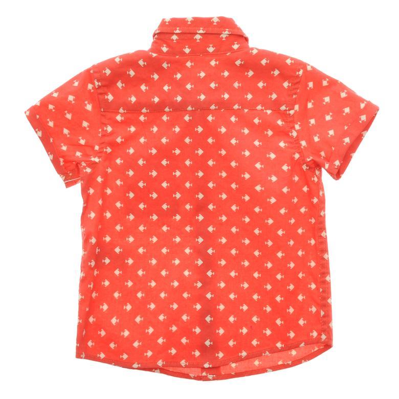 Erkek Bebek Kısa Kollu Gömlek 1711294100