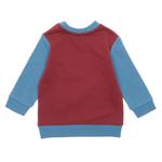Erkek Bebek Sweatshirt 18216088100