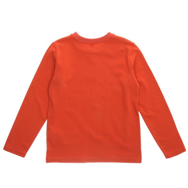 Sweatshirt 1621600100