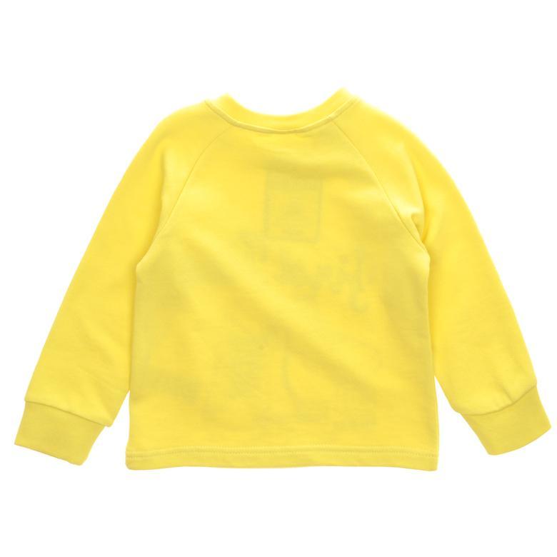 Sweatshirt 1621653100