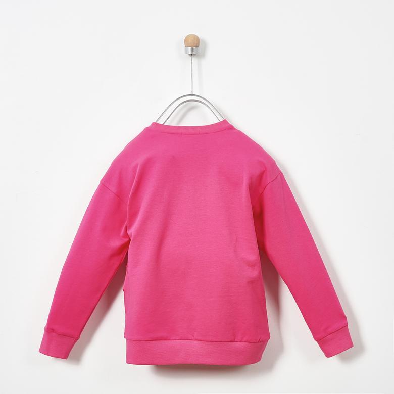 Sweatshirt 19231105100