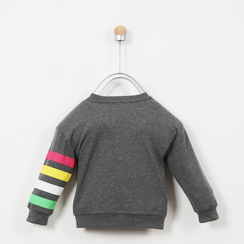 Sweatshirt 19231068100