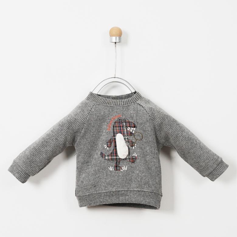 Erkek Bebek Sweatshirt 19216081100