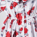 Elbise 2011GB26008