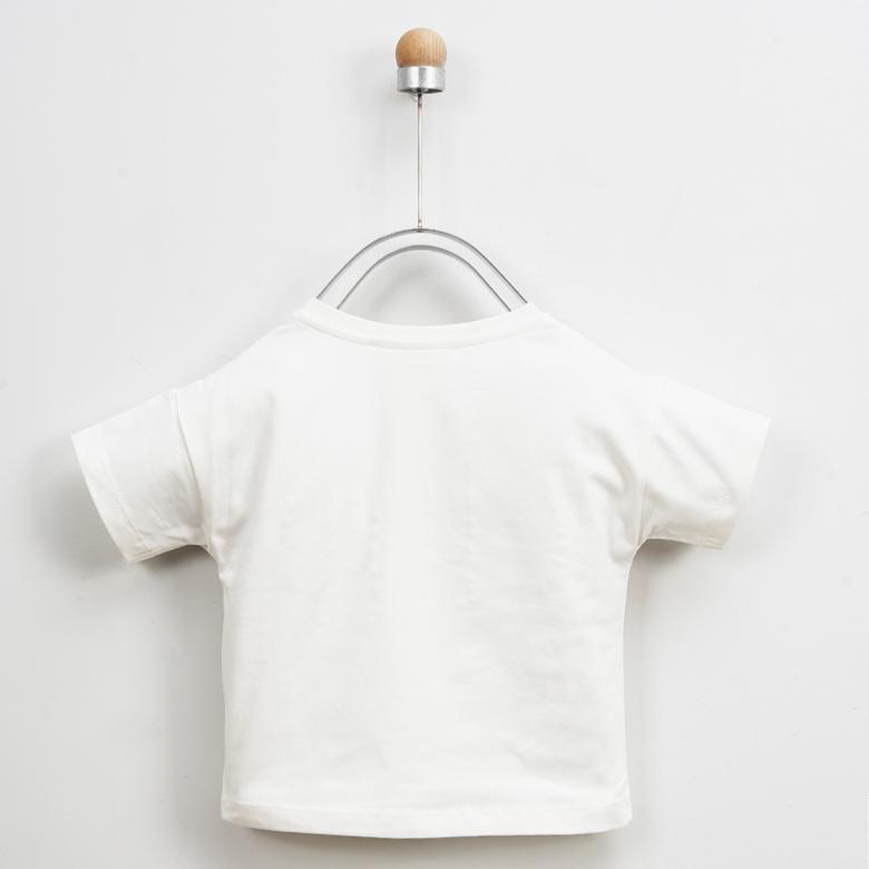 Body 2011GK03018