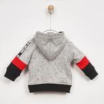 Erkek Bebek Kapşonlu Sweatshirt 2021BB08024