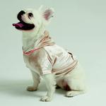 Hoodie Pet 9931UK33006