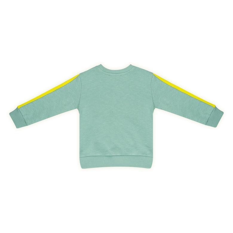 Erkek Bebek Sweatshirt 2121BB08002