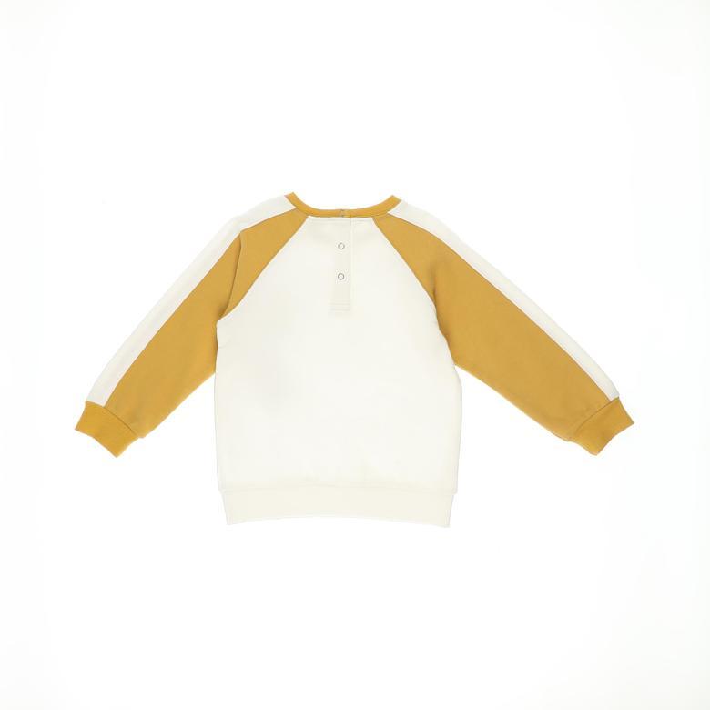 Erkek Bebek Sweatshirt 2121BB08050