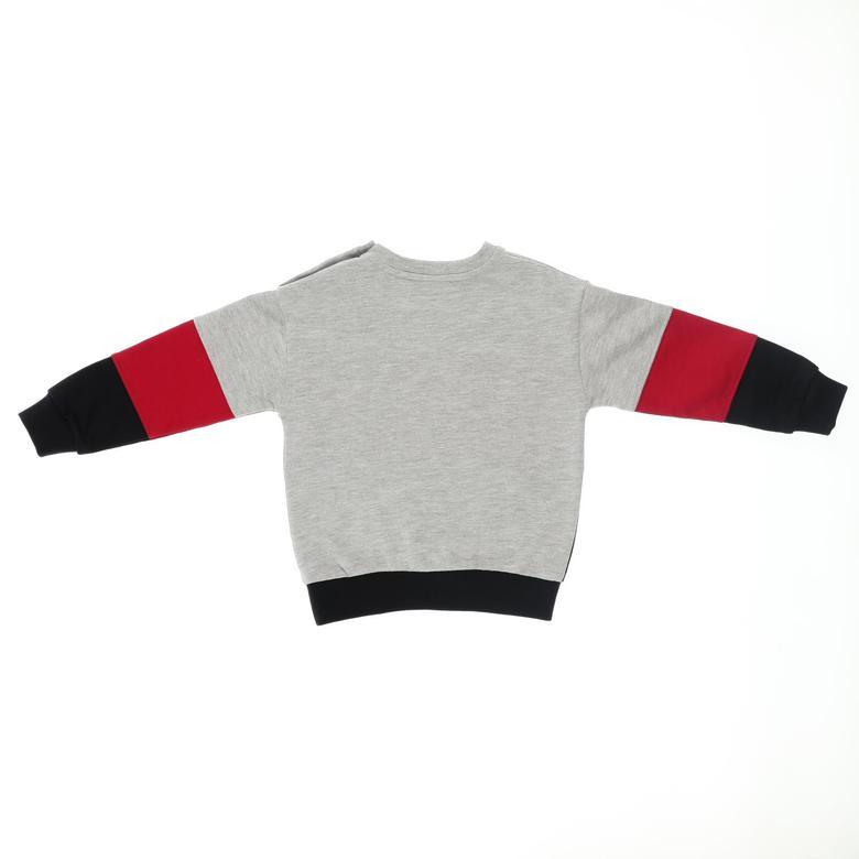 Erkek Bebek Sweatshirt 2121BB08046