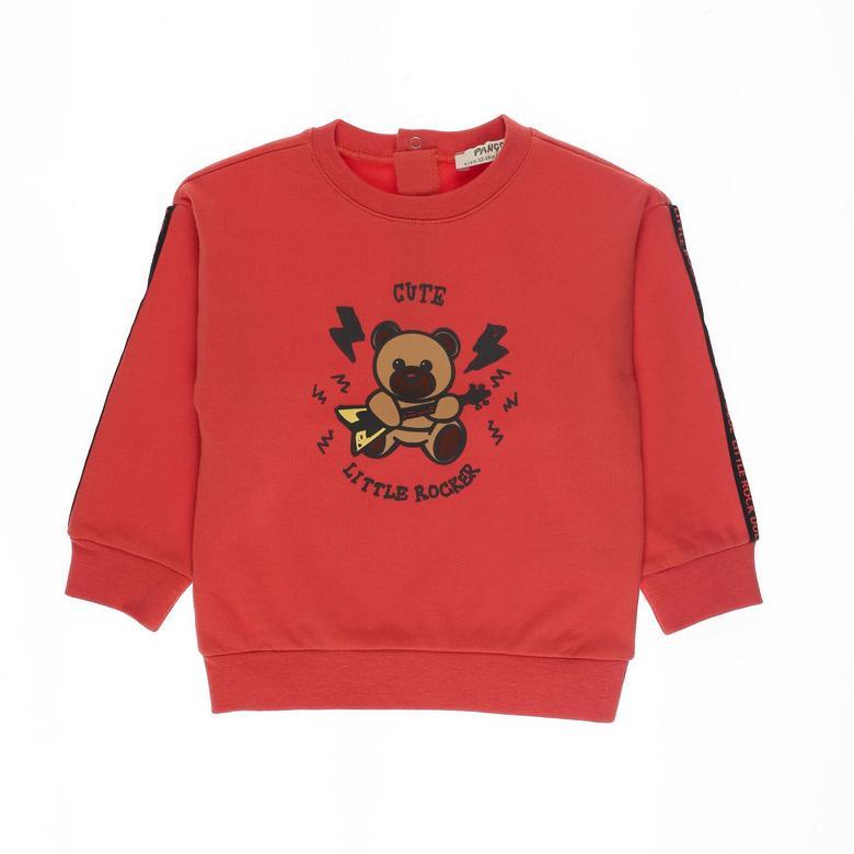 Erkek Bebek Sweatshirt 2121BB08017