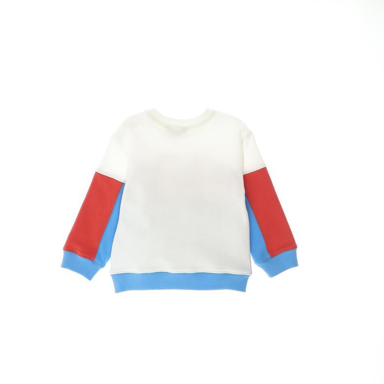 Erkek Bebek Sweatshirt 2121BB08020