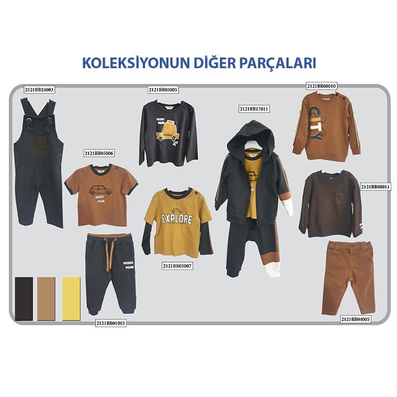 Erkek Bebek Sweatshirt 2121BB08010