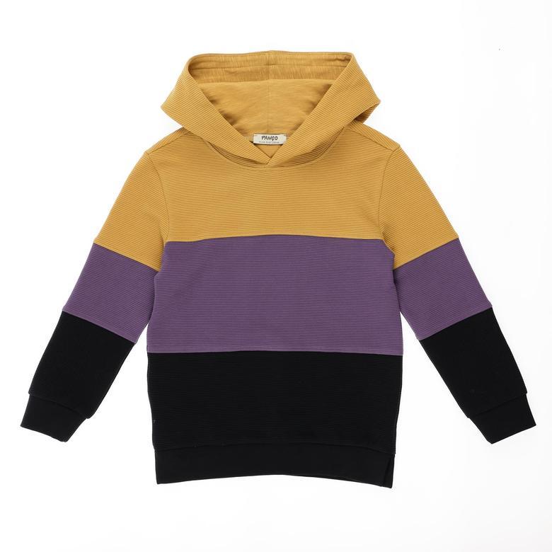 Erkek Çocuk Kapşonlu Sweatshirt 2121BK08020